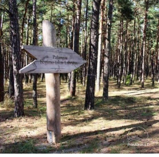 Dzīvoklis Pajūrio Vakarai Palangā, Kunigiskē. Līdz jūrai tikai 250 metri! - 20