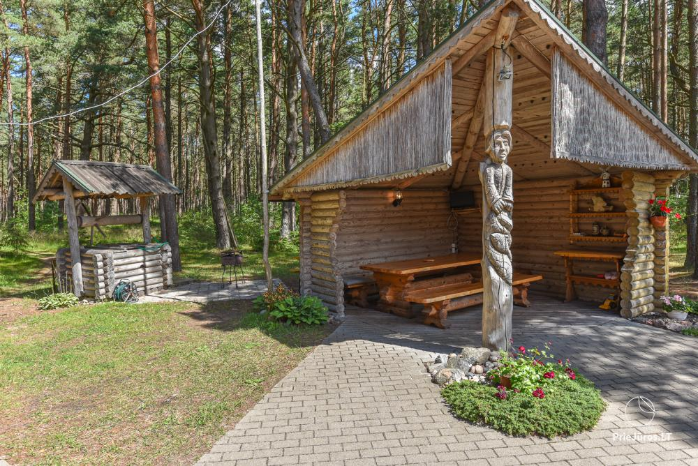 Holiday houses for rent in Palanga, in pine forest, near the sea - 5