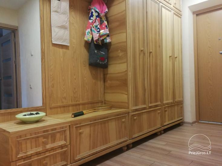 Jaukus 1 kambario butas nuomai Palangoje - 10