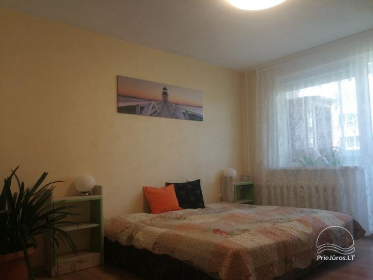 Jaukus 1 kambario butas nuomai Palangoje - 1