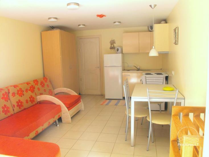 Wohnung zur Miete in Juodkrante