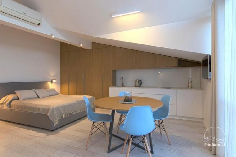 Modernus 1 kambario butas Nidos centre su kondicionieriumi ir parkavimo vieta