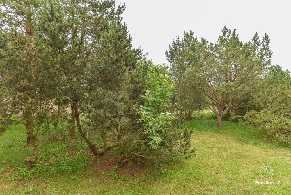 Rest place VERTIKALE in Sventoji - 13