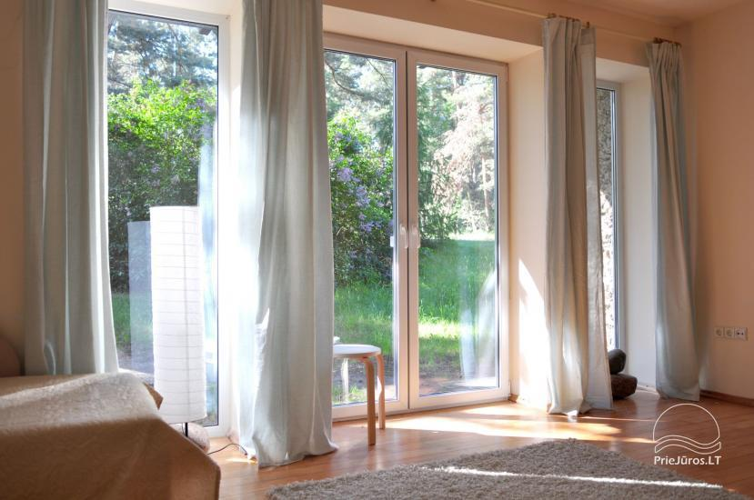 Three rooms apartment in Nida, Curonian spit, near the Baltic sea - 5