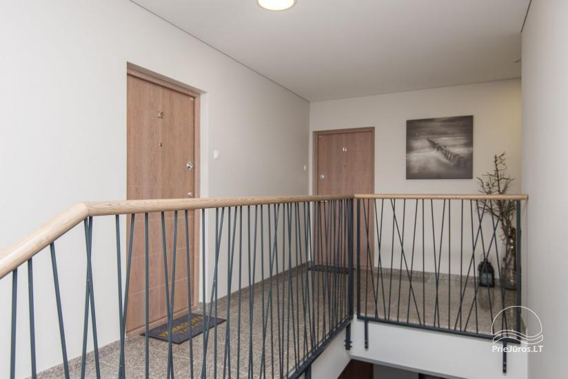Silver Dune Apartment in Palanga's pine forest - 18