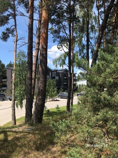 Silver Dune Apartment in Palanga's pine forest - 1