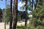Silver Dune Apartment in Palanga's pine forest
