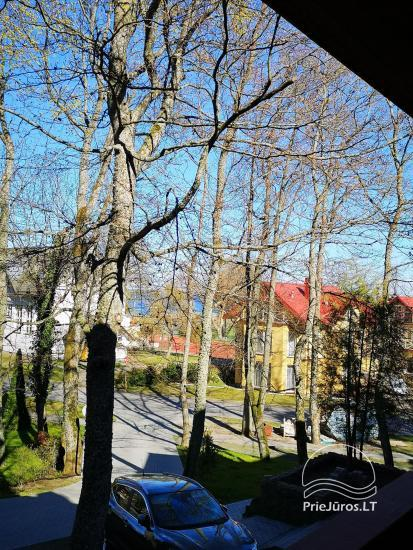 Cozy studio apartments for your rest in Curonian Spit - 7