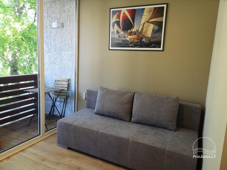 Cozy studio apartments for your rest in Curonian Spit - 8