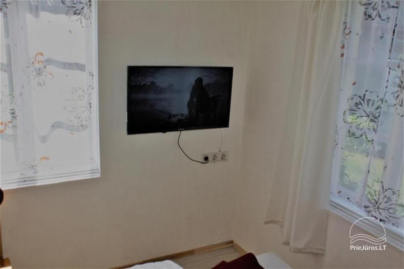 Alyva - kambarių nuoma Palangoje - 5