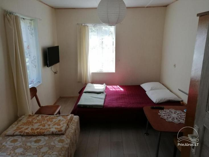 Alyva - kambarių nuoma Palangoje - 4
