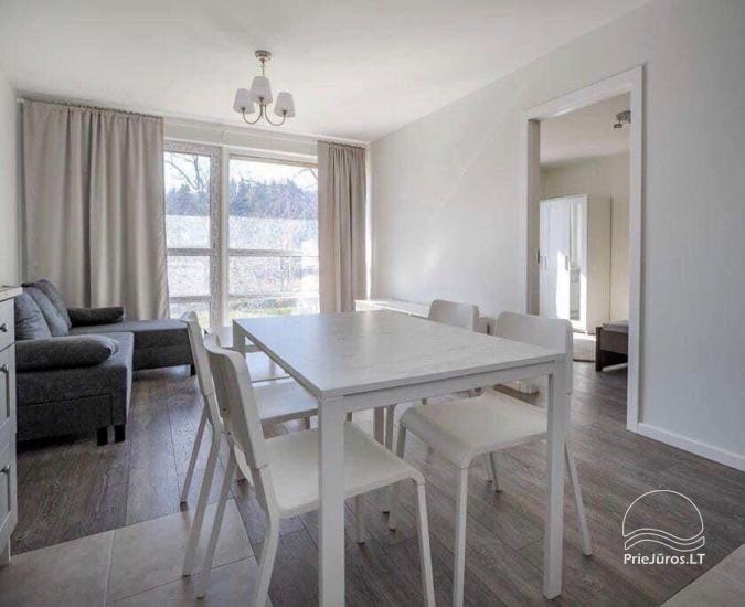 Veziu apartment on the shore of the stream Raze - 4