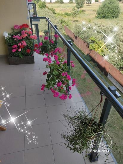 Buto nuoma Palangoje Gėlių apartamentai. Rami vieta šeimai - 5