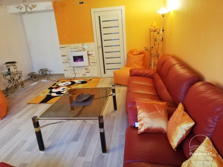 Modern apartment for rent in Rusne - 1
