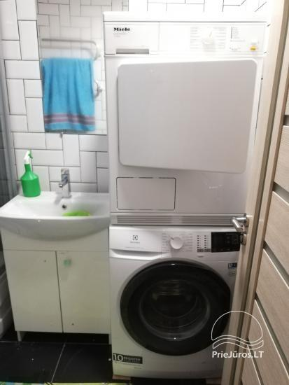 Modern apartment for rent in Rusne - 9