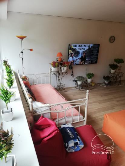 Modern apartment for rent in Rusne - 11