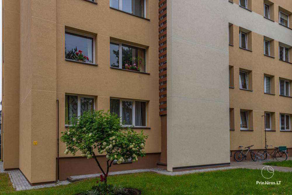 Erdvių, jaukių apartamentų nuoma Palangoje - 11