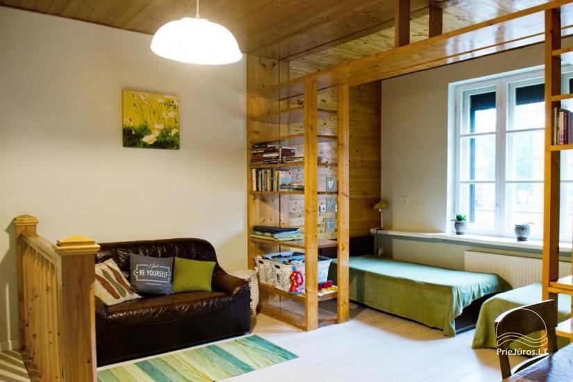 Cosy Apartment - apartamentų nuoma Klaipėdoje - 10