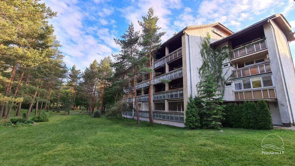Dviejų kambarių buto nuoma su 2 balkonais Palangoje - 18