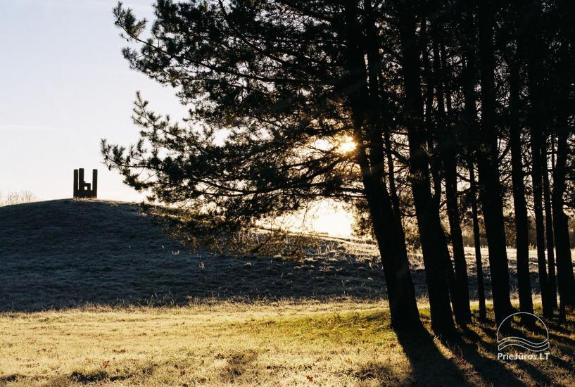 Agluonėnų parko apartamentai + SPA / Baseinas / Jacuzzi / Pirtis - 30