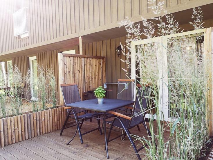 Preila Holiday -  two storey apartment in a pine wood in Curonian Spit - 11
