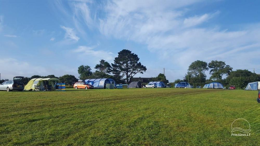 Sea Paradise Surf Farm and Camping - 2