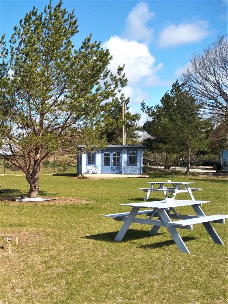 Sea Paradise Surf Farm and Camping - 12