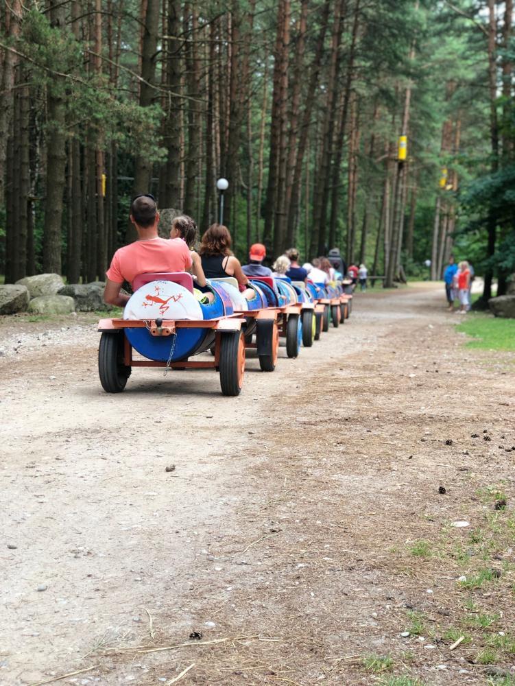 Nuotykių parkas Palangoje Miškas - 13