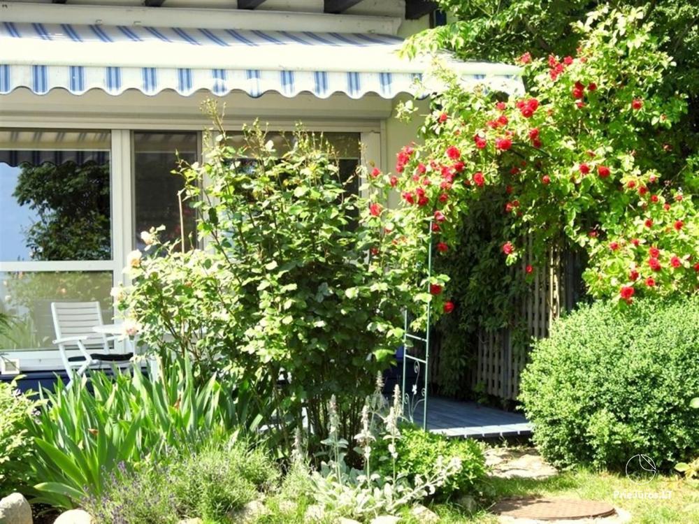 Konsulo kampas - apartamentai Juodkrantėje su vaizdu į marias, sauna ir terasa rožių sodelyje - 2