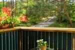 Studijos tipo butų nuoma Nidoje: Miško takas ir Marios - 4