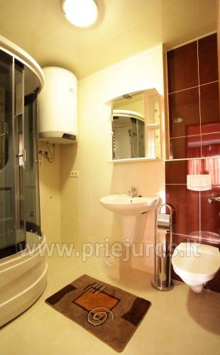 1, 2, 3 Zimmer Appartements in Palanga: Bequemlichkeiten, Mini-Küche,WLAN - 4