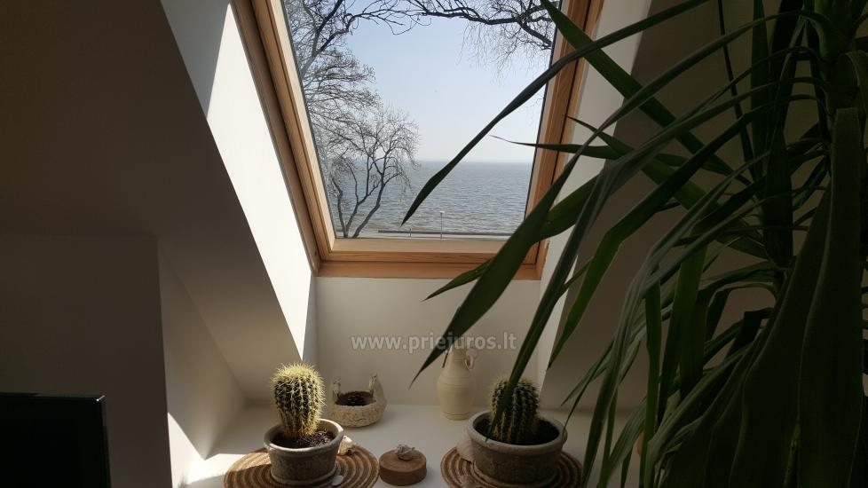 Apartment in the Curonian Spit. - 7
