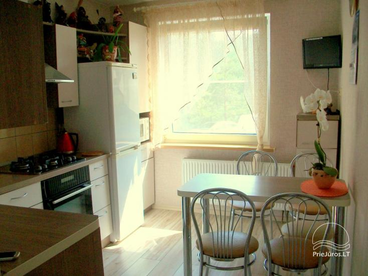 Double room apartment for rent in Juodkrante - 1
