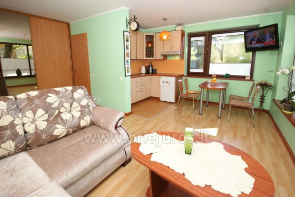 1 room condo rent in Juodkrante with balcony, Curonian spit, Lithuania - 1