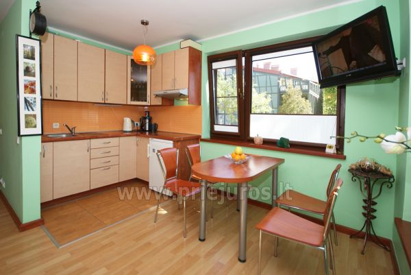 1 room condo rent in Juodkrante with balcony, Curonian spit, Lithuania - 3