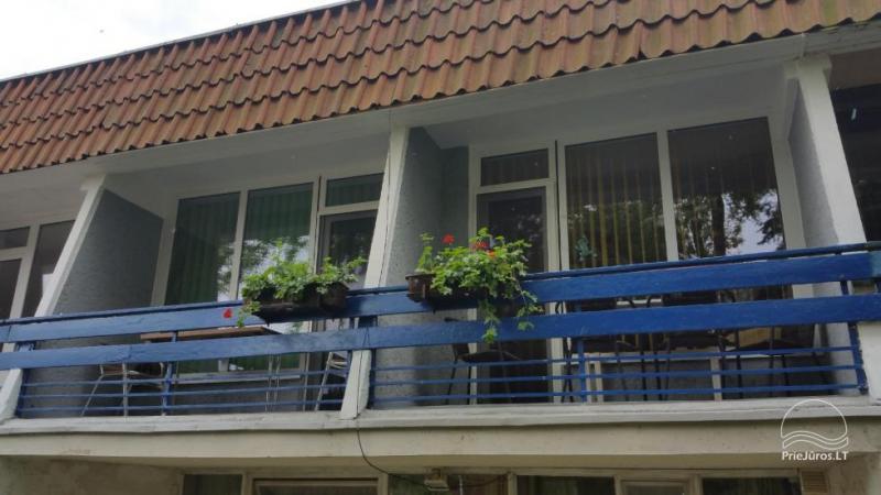 Einzimmerwohnung mit Balkon und allem Komfort zu vermieten in Nida