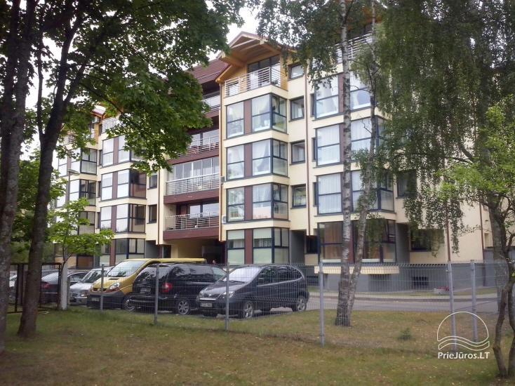 Palangos centre nuomojami 2 kambarių apartamentai - 1