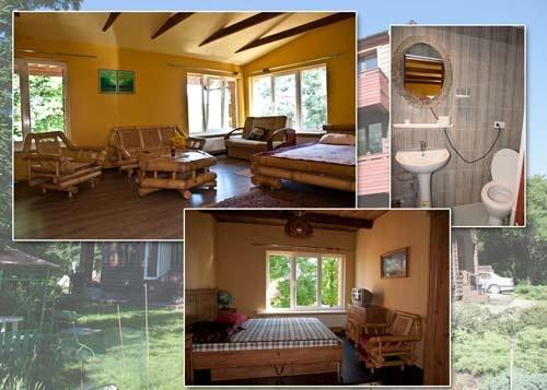 Vila Violeta:visi patogumai, mini virtuvėlės, balkonai, jūra už 300m! - 8