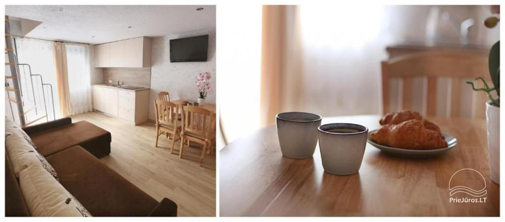 Three rooms flat for rent in Nida, Curonian Spit in Lithuania - 9
