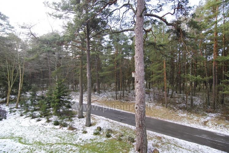 Near the house - bike trail