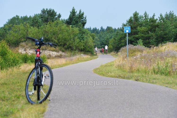 Pajūrio dviračių takas