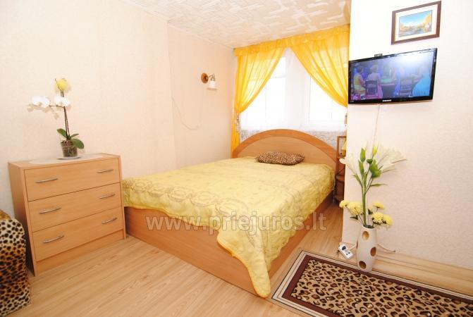 Išnuomojamas jaukus 2 kambarių butas Nidoje ant Kuršių marių kranto - 2