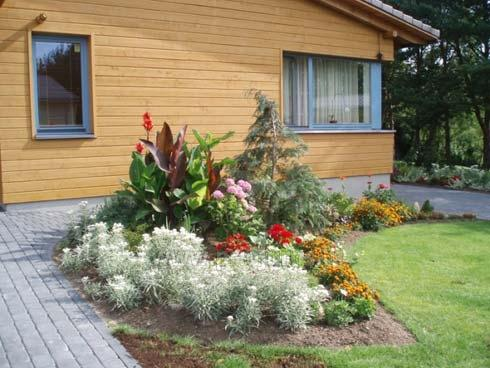 Holiday Villa Palanga - holiday cottage and apartments for rent - 2