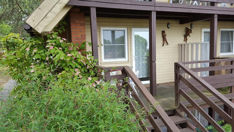 Apartments for rent Villa Nendre in Neringa - 42