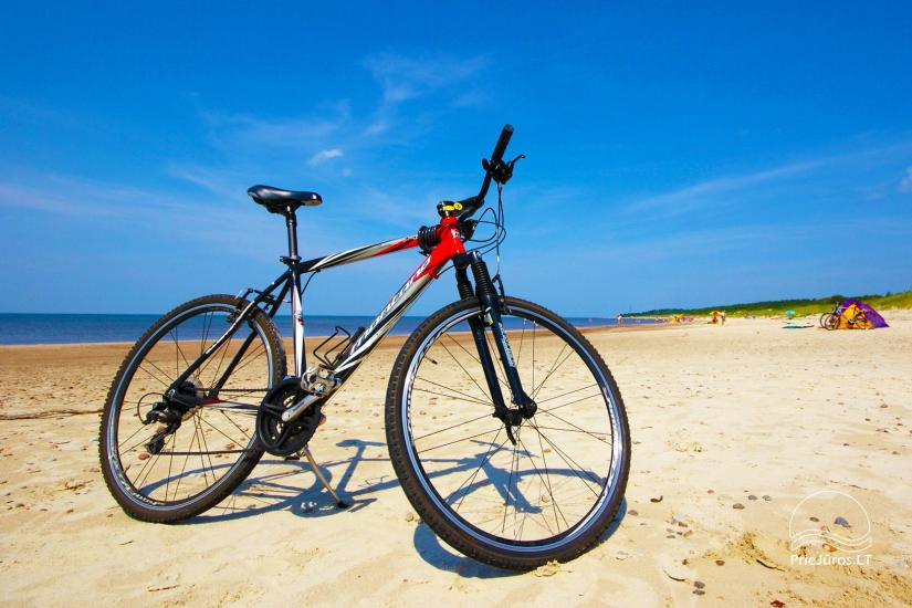 Bicycle rental for our guests