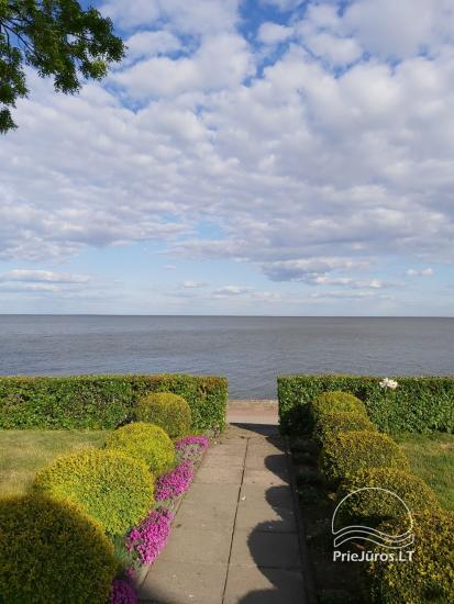 One-room apartment and double room in Nida in a house on the shore of the Curonian lagoon - 11