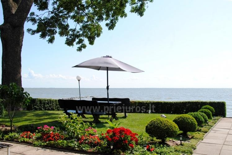 One-room apartment and double room in Nida in a house on the shore of the Curonian lagoon - 1
