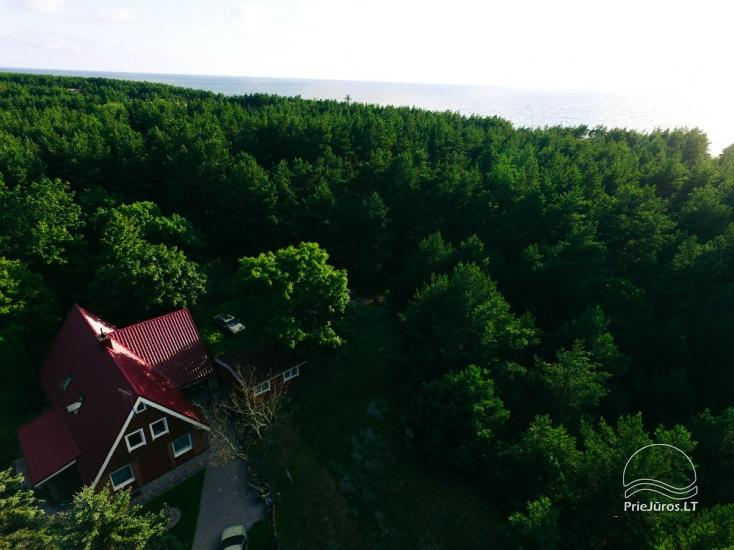Holiday cottages and rooms for rent in Palanga, Kunigiškės. 150 meters to the sea - 1