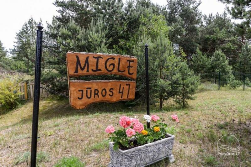 Mediniai nameliai MIGLĖ
