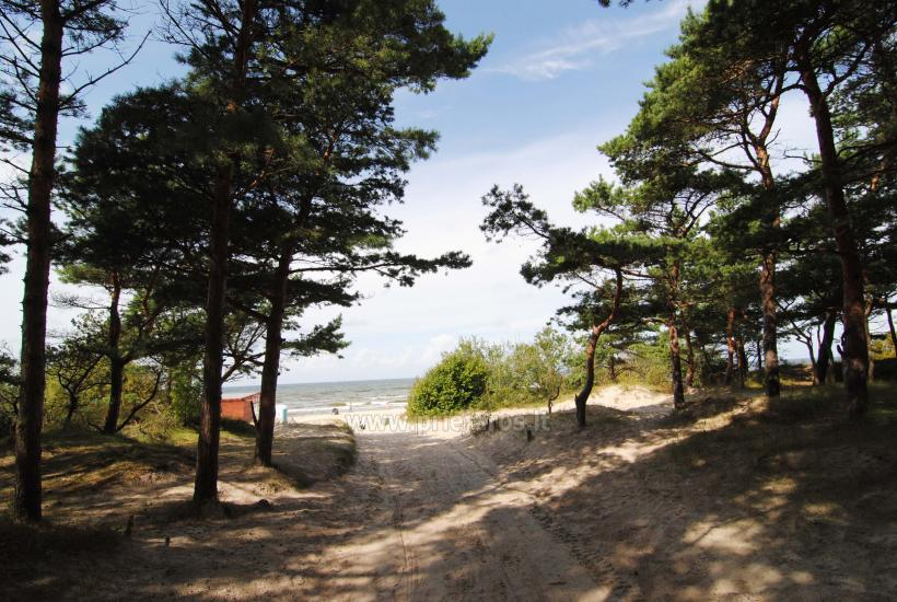 Holiday houses GENIO NAMUKAI for rent in Palanga - 23